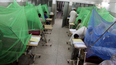 Photo of 5,722 Suffered With Dengue In Sindh This Year