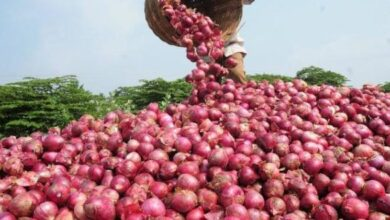 Photo of Onions Worth Millions Stolen In India