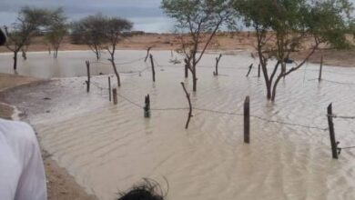 Photo of Balochistan Receives Good Rain