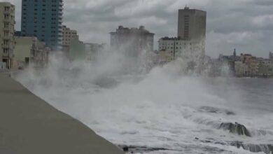 Photo of ہیوسٹن، خطرناک سمندری طوفان شدت کٹیگری 3میں تبدیل، آبادی کے لازمی انخلا کا حکم جاری